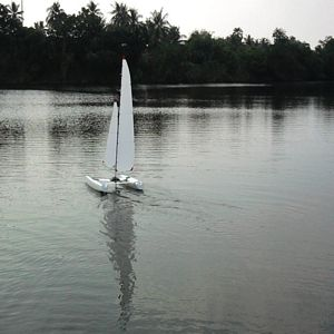 Venom - Mini40 Catamaran